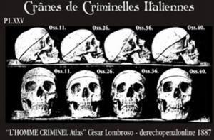 Lombroso Lhomme criminell