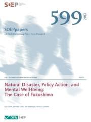 SOEP599