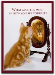 selfreflection
